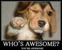 who'sawesome